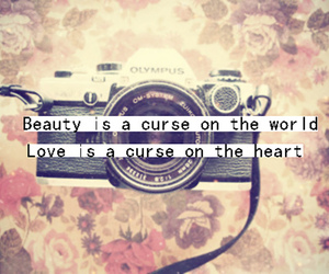 beauty, typography, and love image