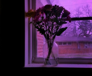 purple, flowers, and beautiful image