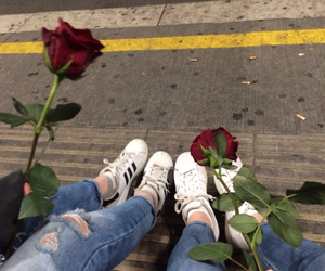 rose, tumblr, and red image