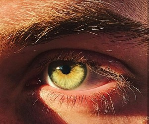 green eyes, guys, and picture image