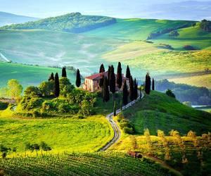 italy, Tuscany, and nature image