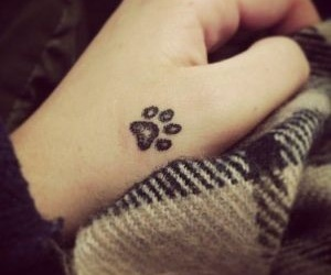 tattoo and paw image