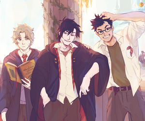 gryffindor, harry potter, and james potter image