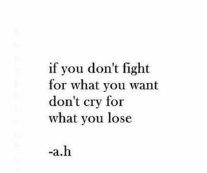quotes, fight, and cry image