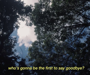 quote, forest, and sky image