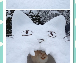 funny, lol, and snow image