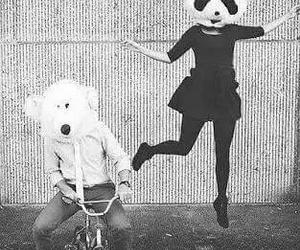 panda, black and white, and bear image