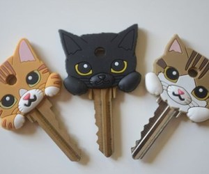 cat, key, and cute image