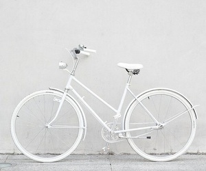 bicycle, photography, and fashion image