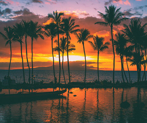 beach, sunset, and hawaii image