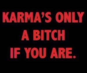 karma, bitch, and quotes image