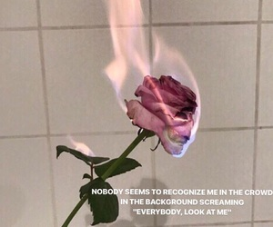 fire, roses, and tumblr image