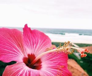 Image by paradise