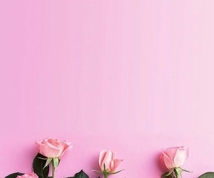 green, pink, and roses image