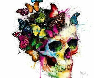 skull, butterfly, and colors image