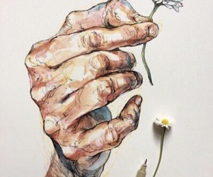 art, daisy, and flower image