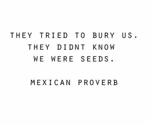 quote, mexican proverb, and badass proverb image