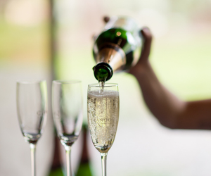 celebrate, champagne, and drink image