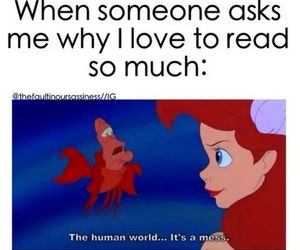 book, funny, and little mermaid image