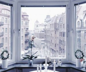 lilac and theme image