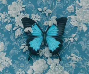 awesome, blue, and butterfly image