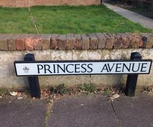 princess and avenue image