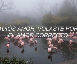 frase, sad song, and español image