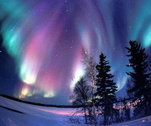 beautiful, light, and aurora borealis image