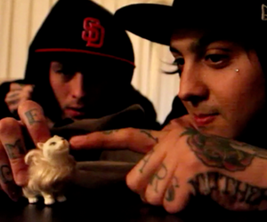 cat, hairy, and mike fuentes image