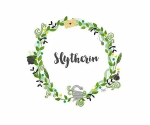 slytherin, fandom, and hogwarts image