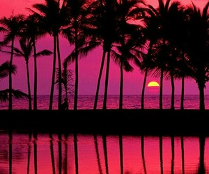 wallpaper, beach, and pink image