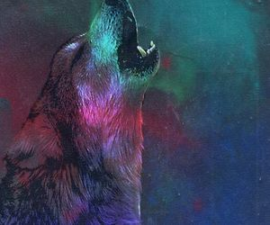 wolf and galaxy image