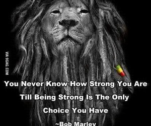 lion, strong, and quotes image