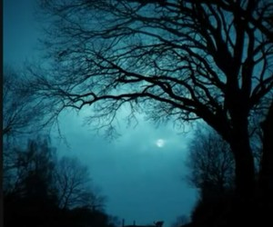 night, moon, and tree image