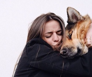 dog, girl, and love image