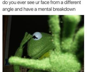face, humor, and kermit image
