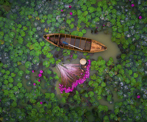 dam, drone, and lily image