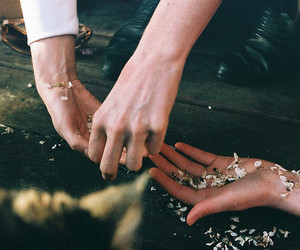 hands, vintage, and flowers image