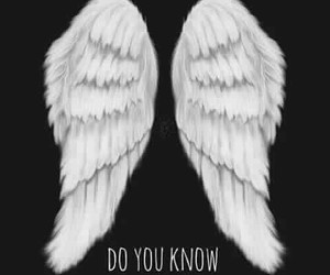 hush hush, patch cipriano, and ángel image