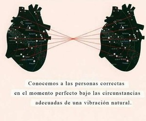amor, destino, and frases image