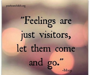 feelings, quotes, and visitors image