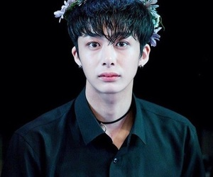 hyungwon, asian, and flower crown image