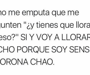 chicas, cry, and frases image