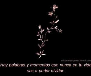 frases, moments, and feelings image