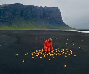 nature, orange, and art image