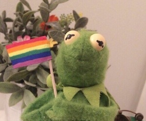 kermit, meme, and lgbt image