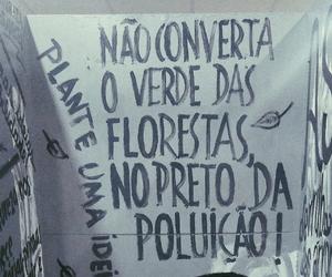 brasil, Photograghy, and floresta image
