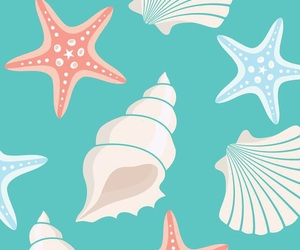 wallpaper and seashells image