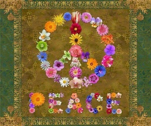 flores, groovy, and flowers image