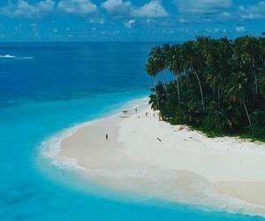 beach, paradise, and sea image